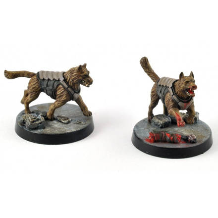 Picture of Unity Council Stim Hounds (4)